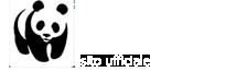 WWF Rovigo